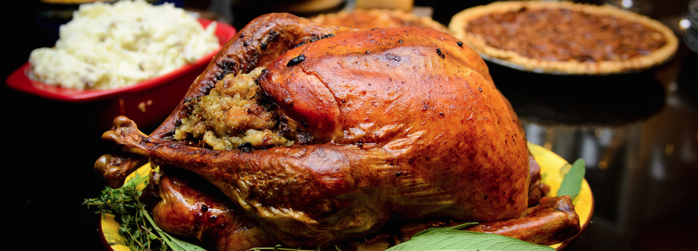 Reimagining Your Thanksgiving Turkey